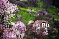 Safranbolu'da Bahar