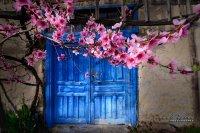 Kapılara Bahar Geldi